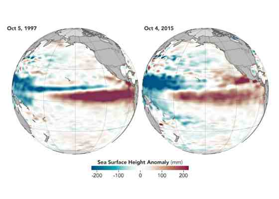 ENSO sea level comparison, 1997 and 2015